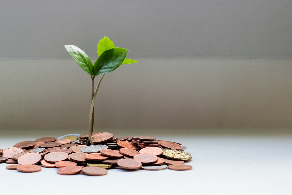 Image of a small plant seemingly growing out of a pile of coins.