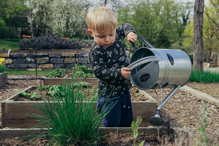 Image of a small child using a tin watering can to water plants in a backyard garden.