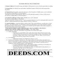 Dupage County Special Power of Attorney Guidelines Page 1