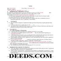 Delaware County Completed Example of the New York Promissory Note Page 1